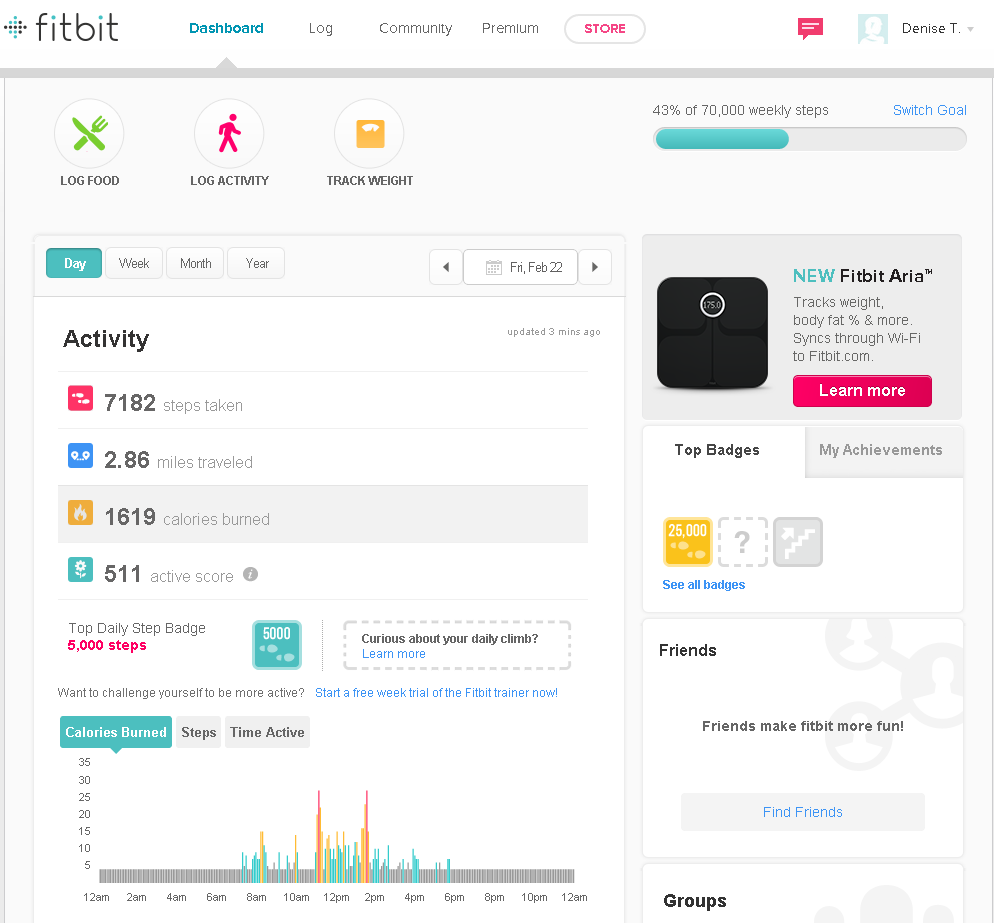 FitBit_ScreenShot1