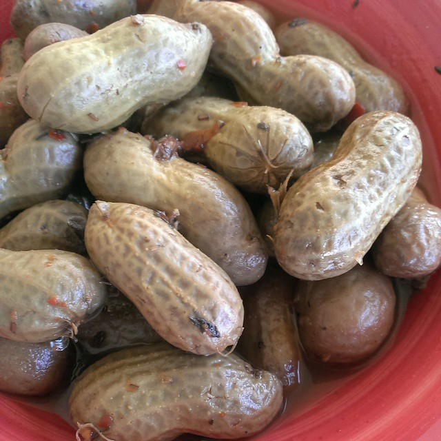Boiled Peanuts by #IronChefAllan so tasty you would swear he was from the #South. Is there nothing he can't make?! Itsasouthernthing #food #yummy #nomnomnom #foodpornindex #foodporn