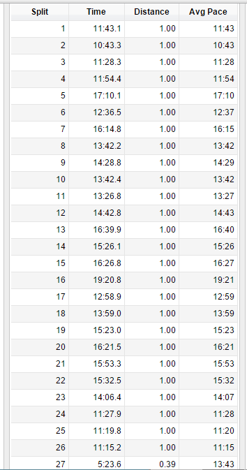 My NYC Marathon Splits