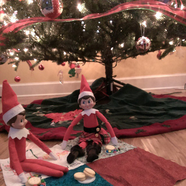 Day 15 - #elfontheshelf escapades - Twinkle and Giggles enjoyed a picnic under our #Christmas tree. #Elf #fun Day15 #Christmas2014