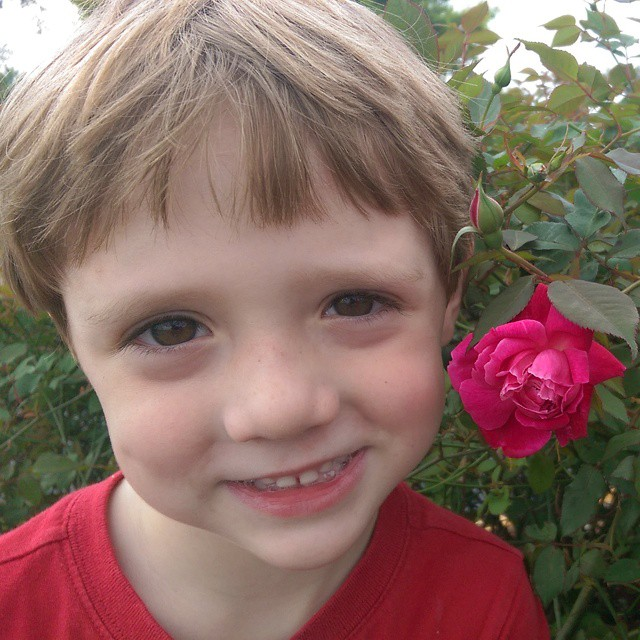 This morning, #LittleLionMan decided to literally stop and smell the roses. #life #smile #love #live #proudmom
