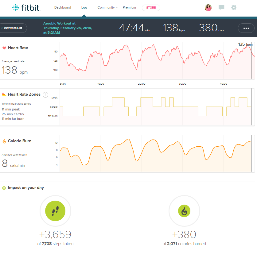 Fitbit activity log