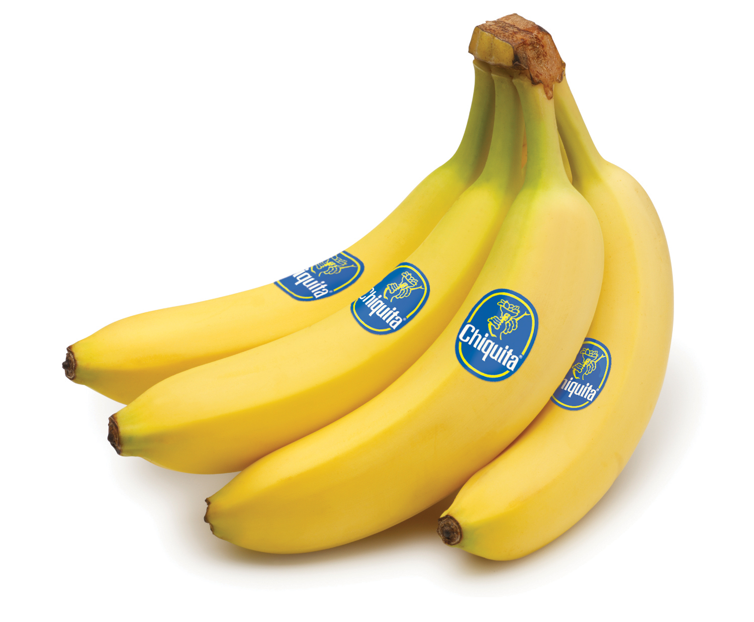 chiquita in columbia Blood bananas: chiquita in colombia case study help, case study solution & analysis & blood bananas: chiquita in colombia case solution case synopsis chiquita brands international and the leaders of the company learnt a very hard lesson, aft.