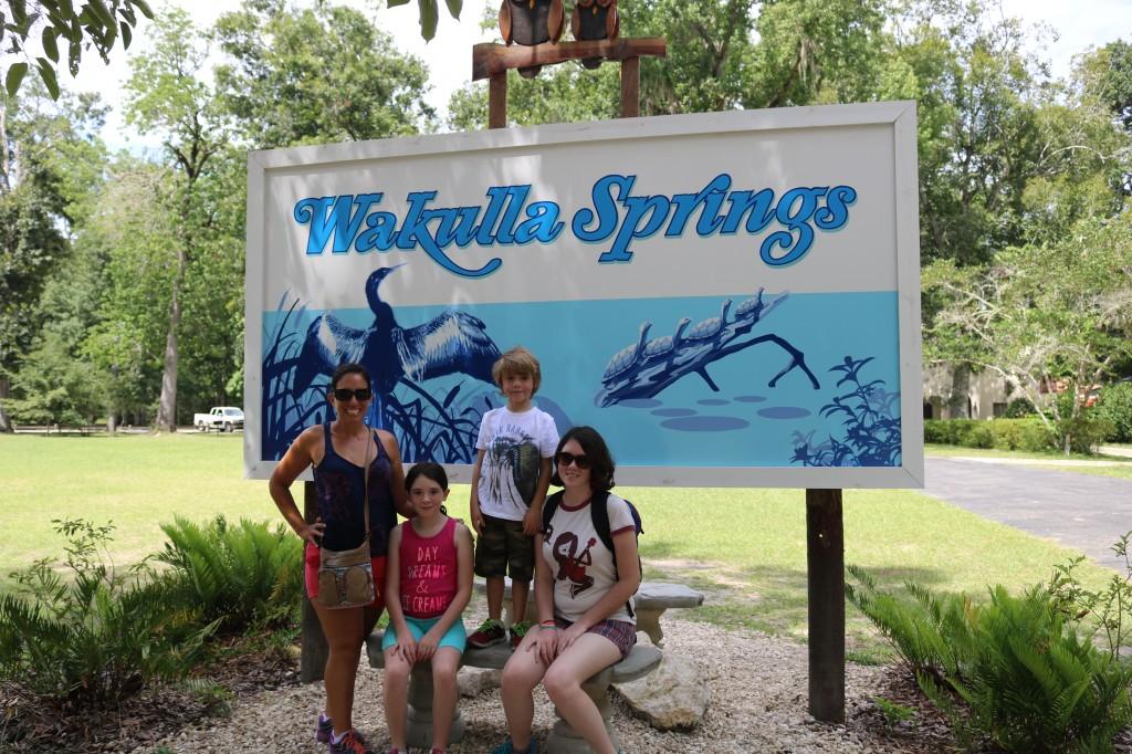 Wakula Springs - Tallahassee