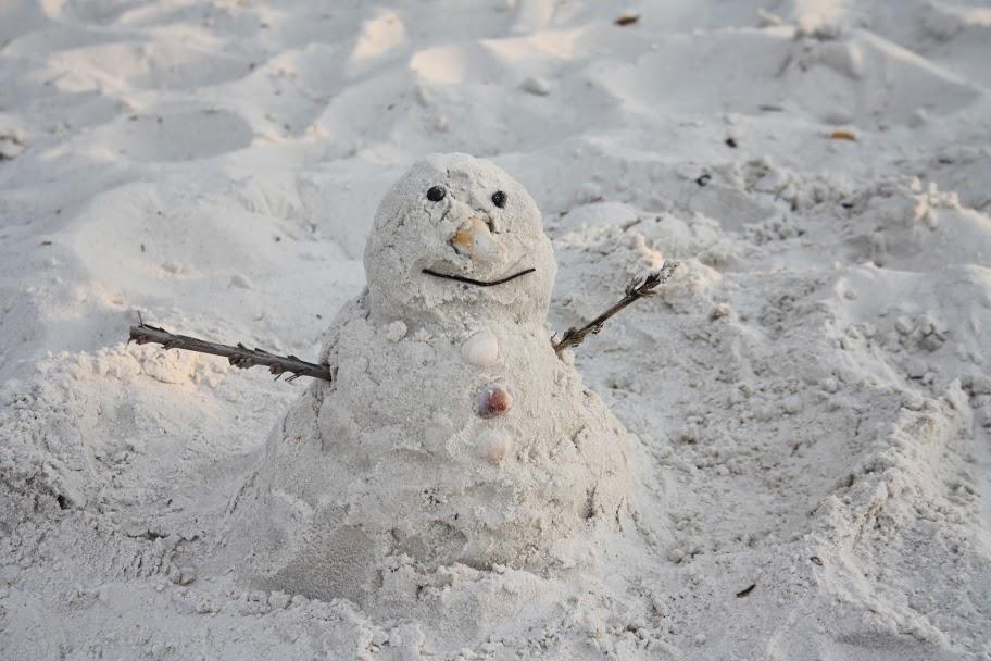 Florida Sandman