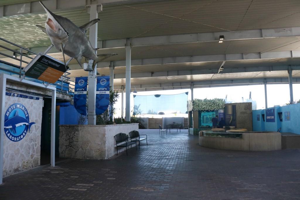 Mote Marine Aquarium - Sarasota