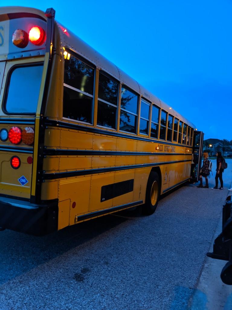 Bus1- 2019
