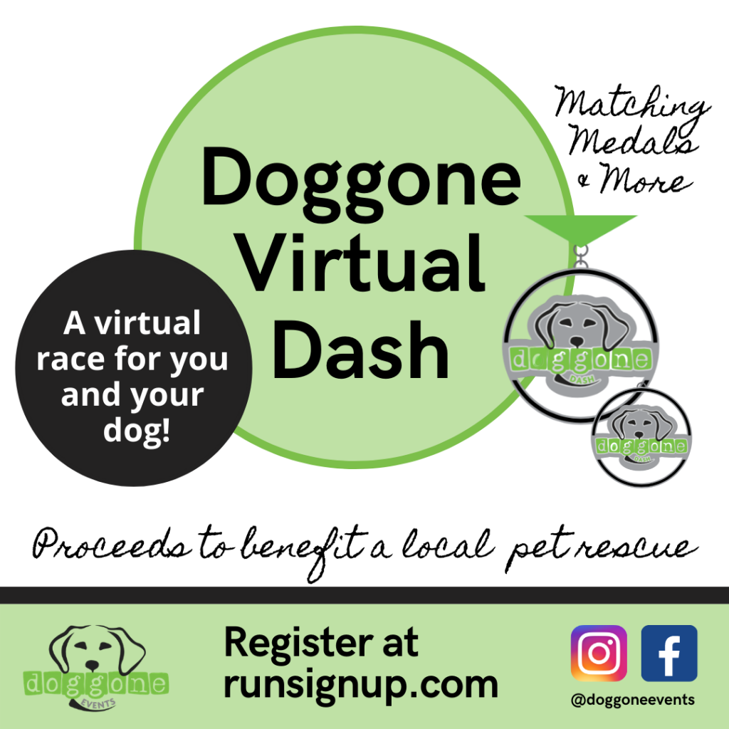 Doggone Dash